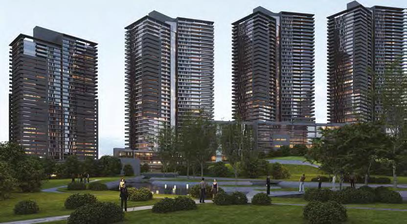 YDA West Avenue Residential & Commercial Areas Project